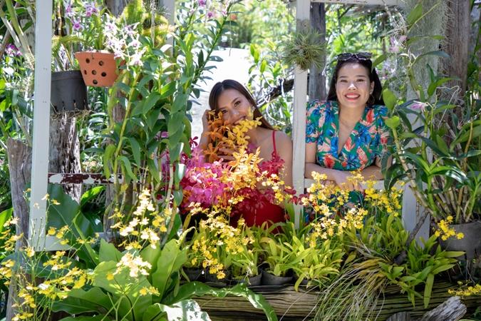 tour-dao-hoa-lan-hang-ngay-longphutourist.com-15.jpg